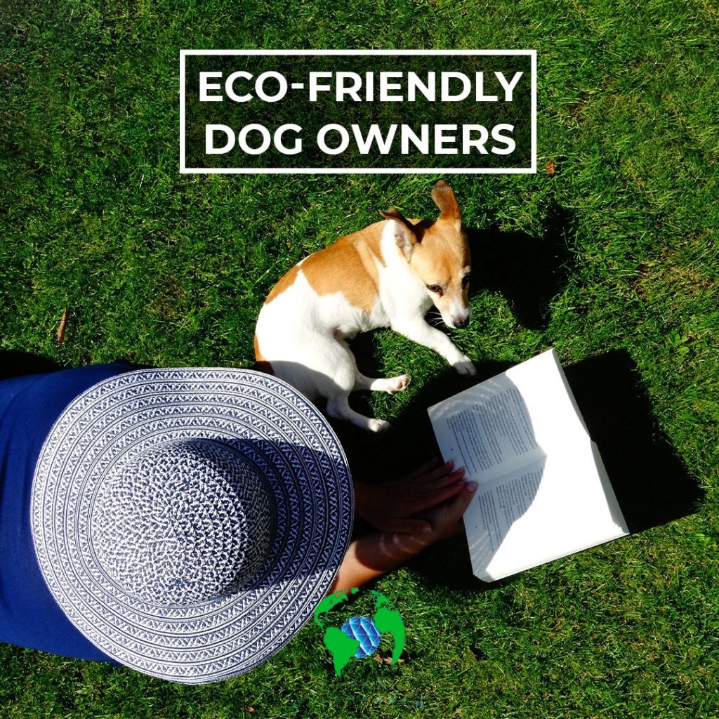 tips-for-eco-friendly-dog-lovers