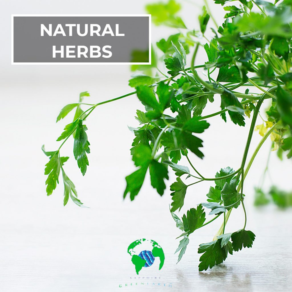 growing-and-using-natural-herbs-in-your-home
