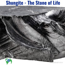 shungite-the-stone-of-life